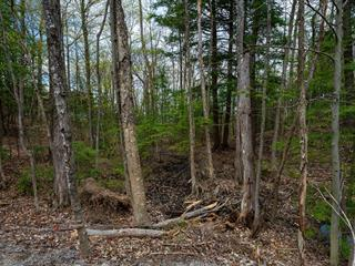 Lot for sale in Chelsea, Outaouais, Chemin  Keewatin, 9676234 - Centris.ca
