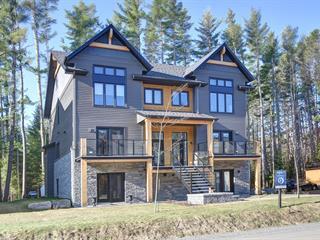Condo / Appartement à louer à Mont-Tremblant, Laurentides, 582, Rue  Charlie-Forbell, 27356905 - Centris.ca