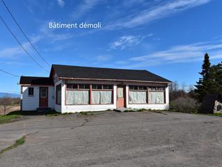 Terrain à vendre à Saint-Jean-Port-Joli, Chaudière-Appalaches, 176, Avenue  De Gaspé Ouest, 12095690 - Centris.ca