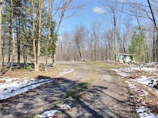 Terrain à vendre à Roxton Pond, Montérégie, 1303, Chemin  Robidoux, 20436830 - Centris.ca