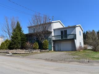 House for sale in Sainte-Euphémie-sur-Rivière-du-Sud, Chaudière-Appalaches, 317, Rue  Principale Ouest, 19877037 - Centris.ca
