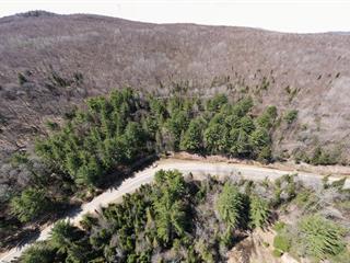 Terrain à vendre à Amherst, Laurentides, Chemin de Rockway Valley, 20129527 - Centris.ca
