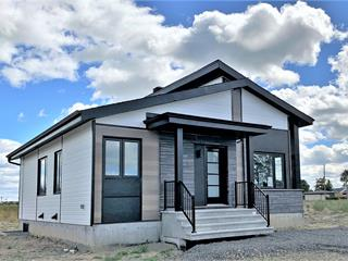 Maison à vendre à Montmagny, Chaudière-Appalaches, Avenue  Édouard-Montpetit, 16091881 - Centris.ca