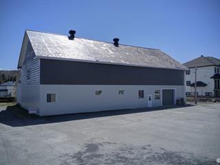 Bâtisse commerciale à vendre à La Guadeloupe, Chaudière-Appalaches, 434, 9e Rue Ouest, 13218035 - Centris.ca