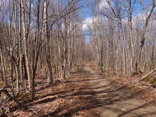 Lot for sale in Wentworth, Laurentides, Chemin  Brothers, 24024930 - Centris.ca