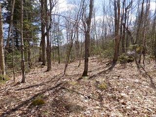 Lot for sale in Wentworth, Laurentides, Chemin  Brothers, 28235227 - Centris.ca