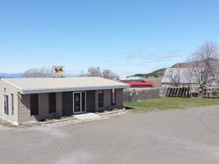 Commercial building for sale in Saint-Philippe-de-Néri, Bas-Saint-Laurent, 170, Route  230 Ouest, 14181297 - Centris.ca
