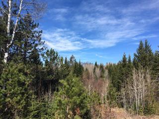 Land for sale in Sainte-Anne-du-Lac, Laurentides, 9e Rang, 26651142 - Centris.ca