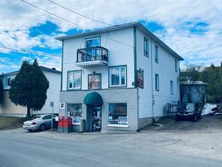 Commerce à vendre à Alma, Saguenay/Lac-Saint-Jean, 1222, Rue  Scott Ouest, 19921199 - Centris.ca