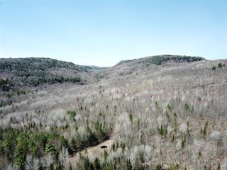 Land for sale in Saint-Damien, Lanaudière, Chemin  Mondor, 14182054 - Centris.ca