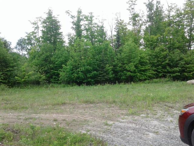 Terrain à vendre à Mont-Laurier, Laurentides, Chemin  Pierrot, 10898850 - Centris.ca