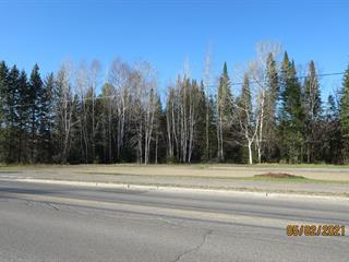 Terrain à vendre à Saint-Donat (Lanaudière), Lanaudière, Rue  Principale, 9464911 - Centris.ca