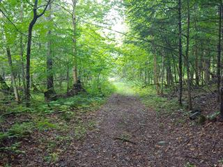 Lot for sale in Wentworth-Nord, Laurentides, 21e Rue, 22194457 - Centris.ca