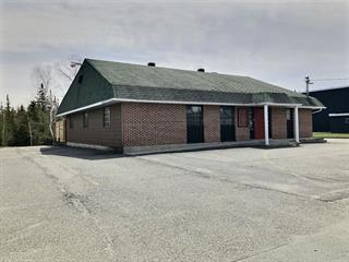 Commercial building for sale in Thetford Mines, Chaudière-Appalaches, 2526, Rue  Notre-Dame Est, 13101805 - Centris.ca