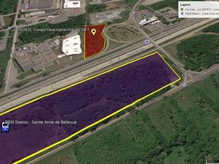 Terrain à vendre à Baie-d'Urfé, Montréal (Île), Route  Transcanadienne, 14968490 - Centris.ca
