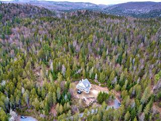Maison à vendre à Val-David, Laurentides, 1901, Chemin de la Rivière, 22972025 - Centris.ca