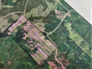 Land for sale in Sainte-Apolline-de-Patton, Chaudière-Appalaches, Route de l'Espérance, 16180842 - Centris.ca