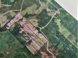 Land for sale in Sainte-Apolline-de-Patton, Chaudière-Appalaches, Route de l'Espérance, 16346937 - Centris.ca
