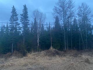 Terrain à vendre à Sainte-Luce, Bas-Saint-Laurent, Route  132 Est, 10902544 - Centris.ca