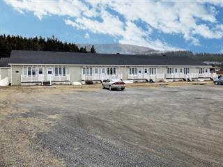 Income properties for sale in Grande-Vallée, Gaspésie/Îles-de-la-Madeleine, 56, Rue  Saint-François-Xavier Est, 27544823 - Centris.ca
