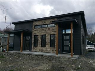 House for sale in Saint-René, Chaudière-Appalaches, 542F, Route  Principale, 13723508 - Centris.ca