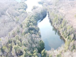 Lot for sale in Otter Lake, Outaouais, Chemin  Stephens, 17739643 - Centris.ca