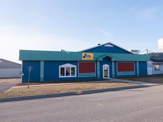 Bâtisse commerciale à vendre à Saint-Pascal, Bas-Saint-Laurent, 327, Avenue de l'Amitié, 17326240 - Centris.ca