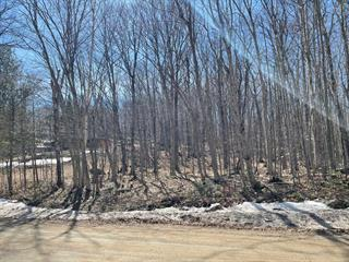 Lot for sale in Wentworth-Nord, Laurentides, Chemin  Lobel, 13628824 - Centris.ca
