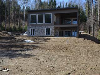 Maison à vendre à Notre-Dame-du-Laus, Laurentides, 55, Chemin des Saules, 24124795 - Centris.ca