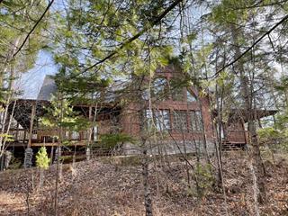 Maison à vendre à Sainte-Thérèse-de-la-Gatineau, Outaouais, 133, Chemin de la Baie-Davis, 10062188 - Centris.ca