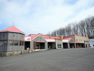 Local commercial à louer à Granby, Montérégie, 252, Rue  Denison Est, 25818727 - Centris.ca