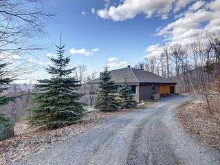 Maison à vendre à Sutton, Montérégie, 848, Chemin  Driver, 17815031 - Centris.ca