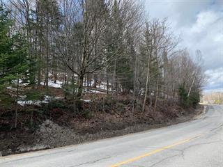 Terrain à vendre à Lac-Supérieur, Laurentides, Chemin du Lac-Supérieur, 10283716 - Centris.ca