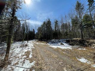 Terrain à vendre à Stanstead - Canton, Estrie, Chemin  Camber, 10102900 - Centris.ca