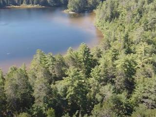 Bâtisse commerciale à vendre à Les Lacs-du-Témiscamingue, Abitibi-Témiscamingue, Chemin du Lac Memewin, 25341487 - Centris.ca