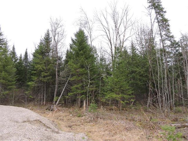 Terrain à vendre à Mont-Laurier, Laurentides, Rue des Osmondes, 17087581 - Centris.ca