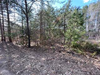 Lot for sale in Otter Lake, Outaouais, Chemin  Lafleur, 17338276 - Centris.ca