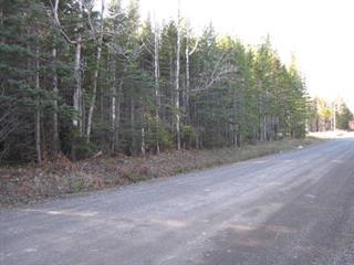 Terrain à vendre à Gaspé, Gaspésie/Îles-de-la-Madeleine, Avenue  McDonald, 14258149 - Centris.ca