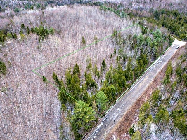 Terrain à vendre à Chertsey, Lanaudière, Chemin du Lac-Brûlé, 28651465 - Centris.ca