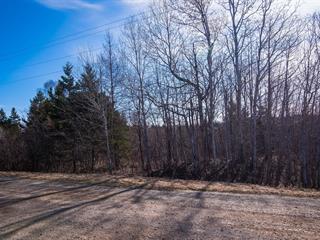 Land for sale in Saint-Antonin, Bas-Saint-Laurent, Rue  Pelletier, 13257928 - Centris.ca