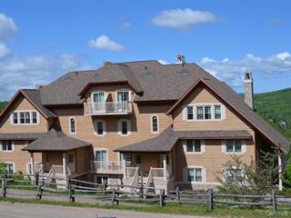 Condo / Appartement à louer à Mont-Tremblant, Laurentides, 146, Rue du Mont-Plaisant, app. 2, 23282576 - Centris.ca