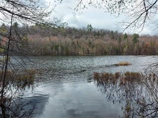 Terre à vendre à Sheenboro, Outaouais, Rue  Non Disponible-Unavailable, 12773053 - Centris.ca