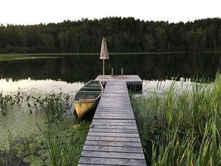 Lot for sale in Mont-Laurier, Laurentides, Chemin  Tour-du-Lac-des-Îles, 12592395 - Centris.ca