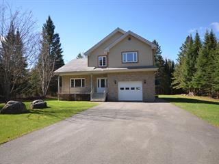 House for sale in Mont-Tremblant, Laurentides, 545, Rue  Émond, 26926896 - Centris.ca