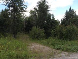 Lot for sale in Mille-Isles, Laurentides, 3, Chemin du Grand-Pic, 21446997 - Centris.ca