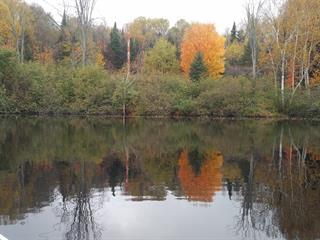 Lot for sale in La Macaza, Laurentides, Chemin du Lac-Chaud, 14858279 - Centris.ca