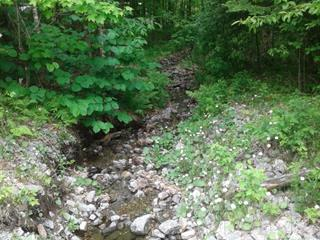 Lot for sale in Mont-Laurier, Laurentides, Chemin  Maurice-Brunet, 20666261 - Centris.ca