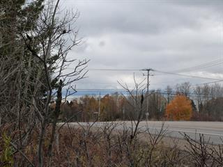 Terrain à vendre à Baie-Saint-Paul, Capitale-Nationale, 1, Route  362, 20543521 - Centris.ca