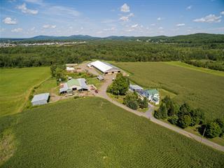 Ferme à vendre à Dunham, Montérégie, 225, Chemin  Fitchett, 13434880 - Centris.ca