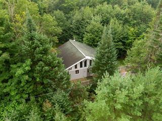 Maison à vendre à Saint-Adolphe-d'Howard, Laurentides, 229, Chemin du Val-des-Bois, 19072990 - Centris.ca